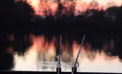 Midweek Fishing Holidays