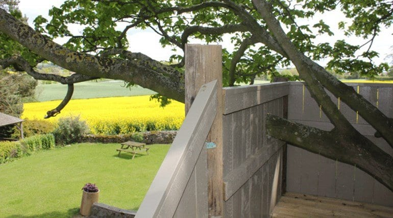 The tree house in Yorkshire that is available to guests of the holiday home